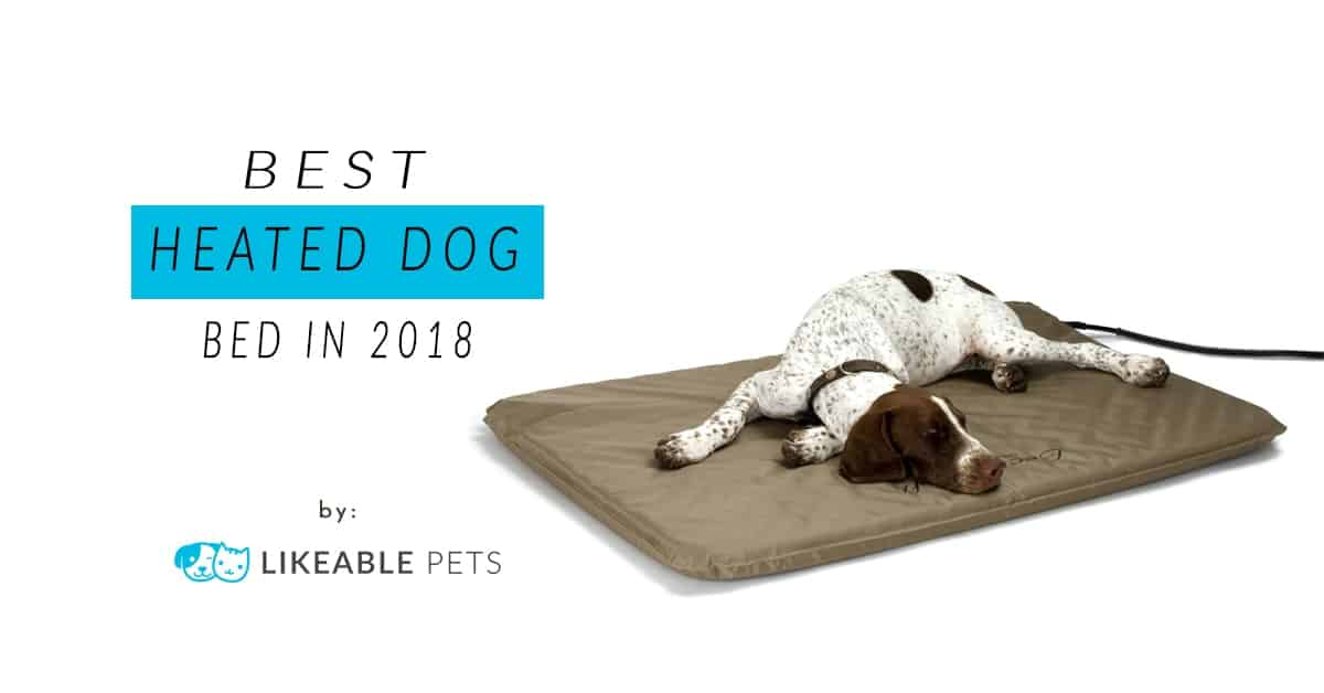 Groomer's Pick: Best Heated Dog Bed in 2018