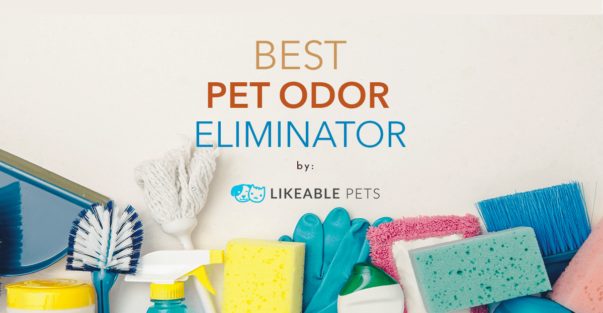 Best Pet Odor Eliminator in 2018